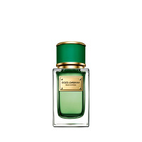 DOLCE&GABBANA Velvet Collection Cypress