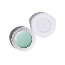 SHISEIDO Полупрозрачные кремовые тени для век VI304